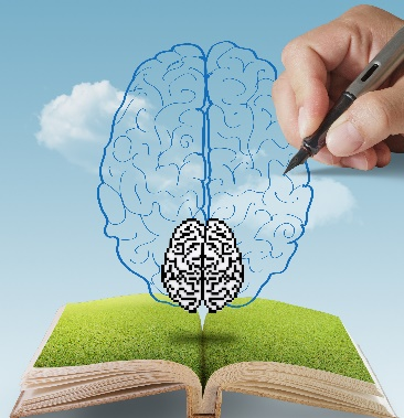 Brain-Based Solutions and Strategies